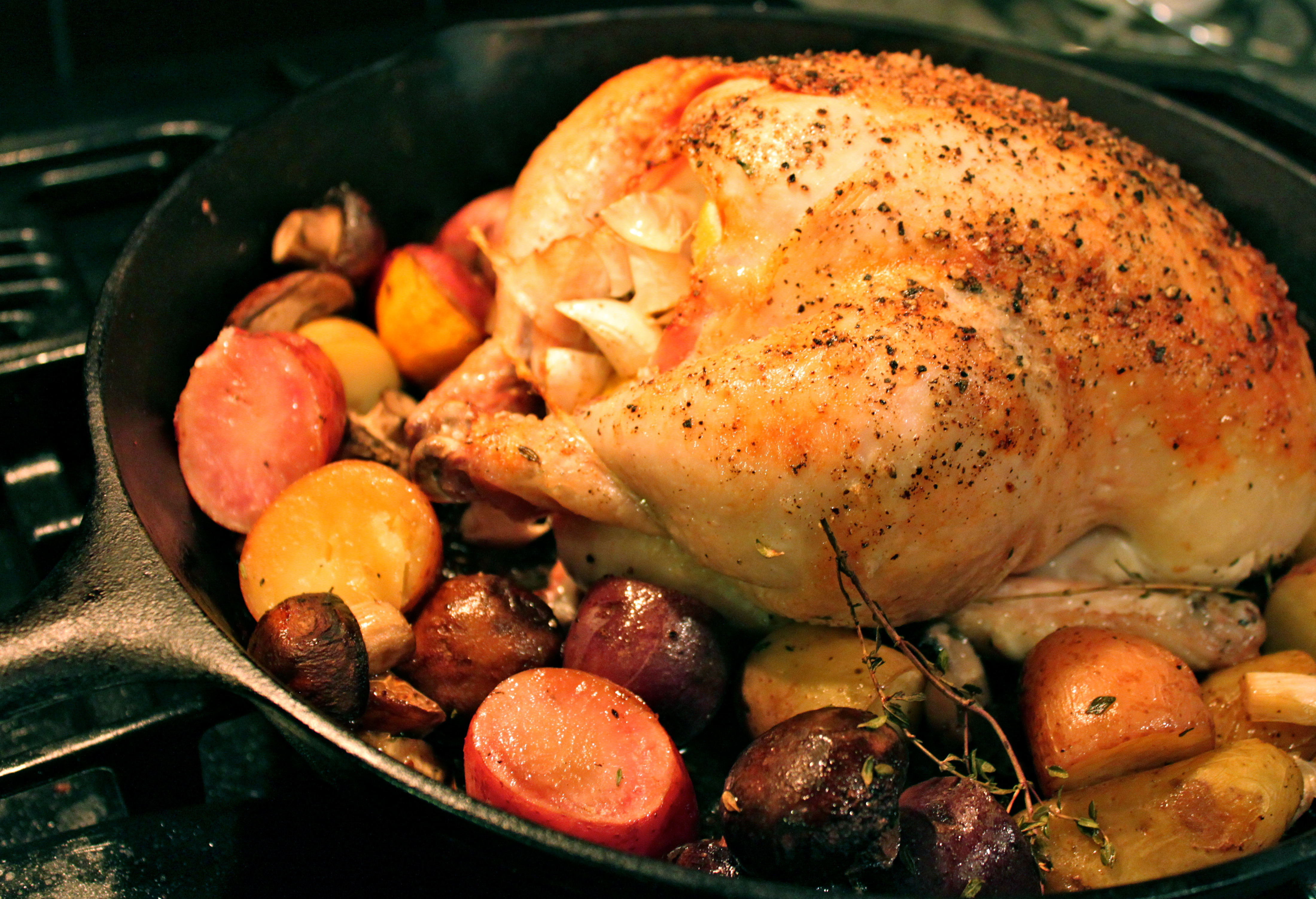 Cast Iron Roasted Chicken with Potatoes and Mushrooms – Mod Meals on ...